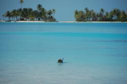 Snorkelling dans le lagon